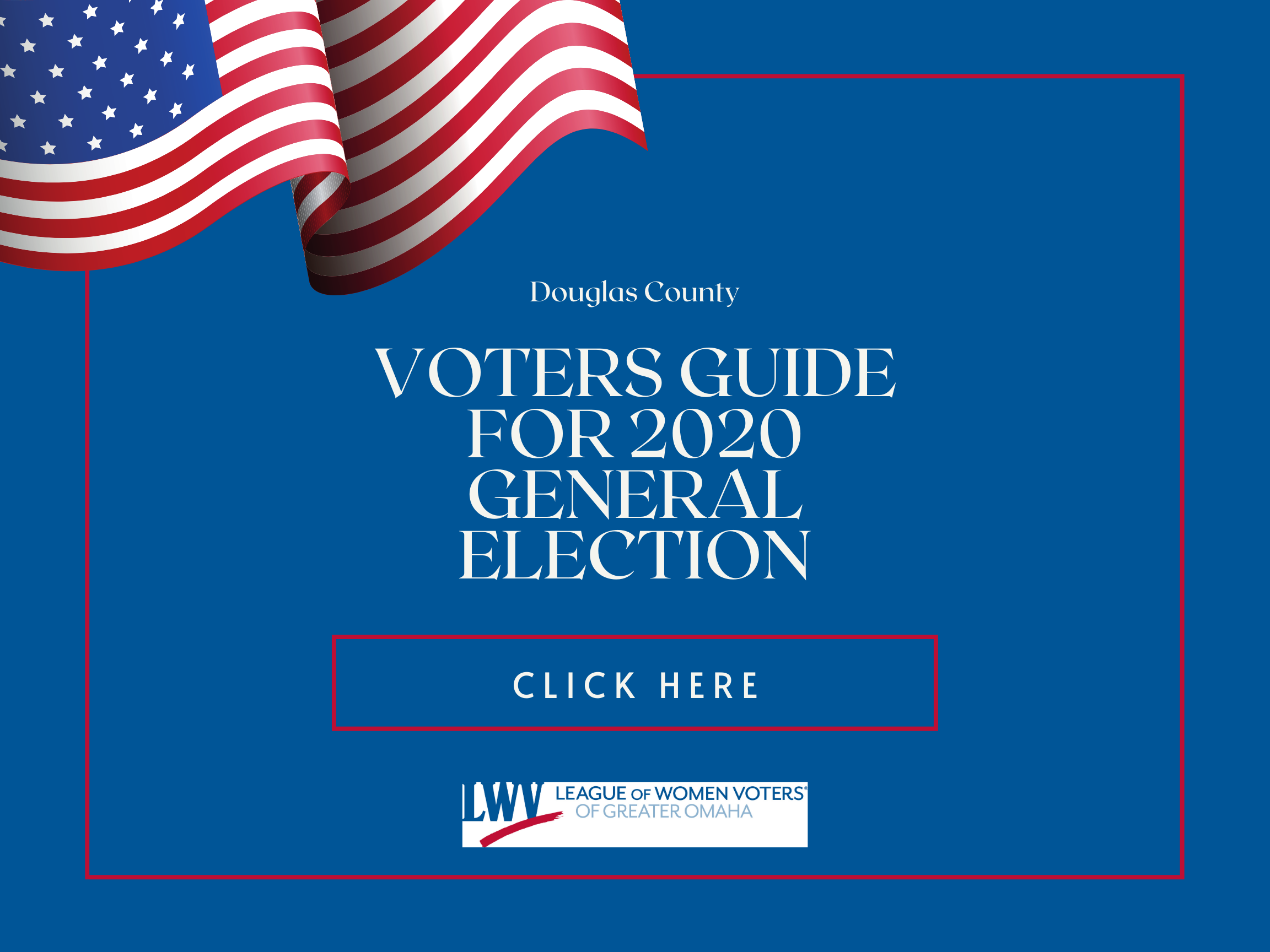 2020 general election voters guide